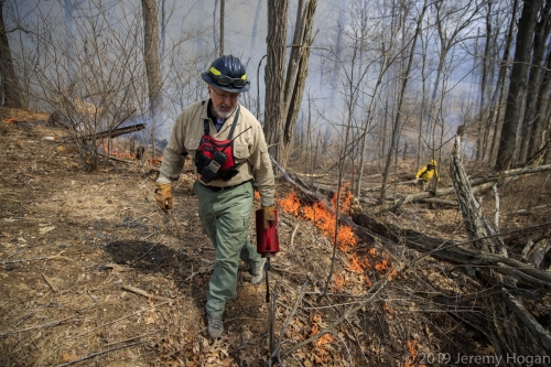 Prescribed fire near Martinsville